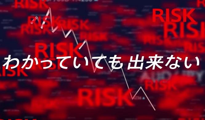 140508shiraishi_tryauto2